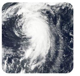 hurricane-maria